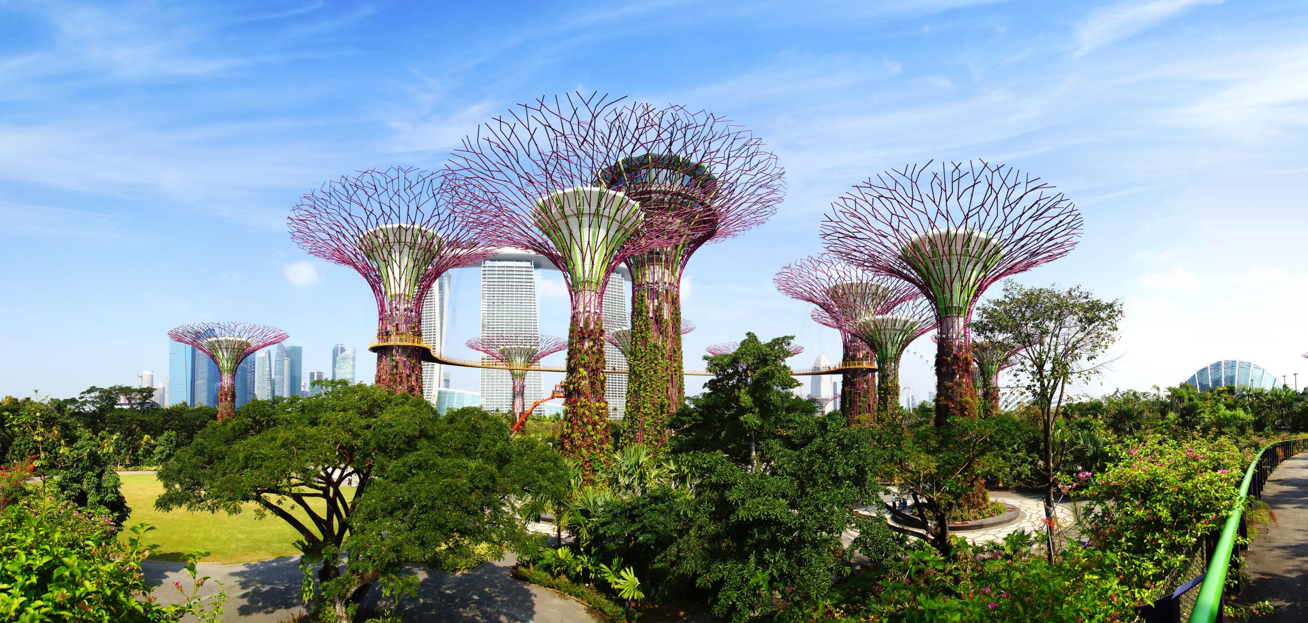 Ein Beispiel für Grünflächen in Großstädten